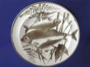 Quality Wedgwood 'Argenta' Majolica Fish Plate c1883